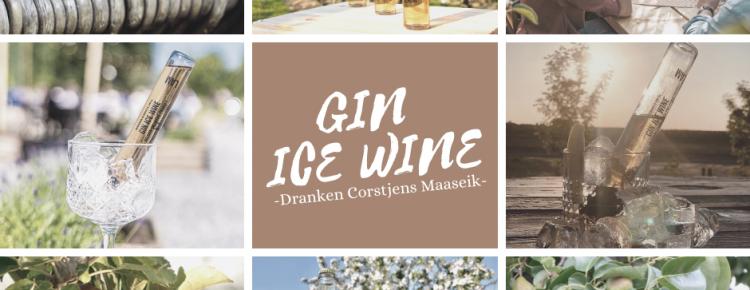 GIN ICE WINE reclame fb & website
